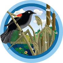 Belle Plaine Logo of a bird on cat tails by a lake