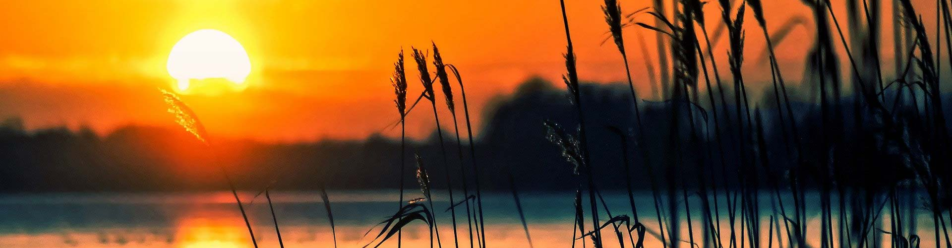 Sunset over a lake with foliage